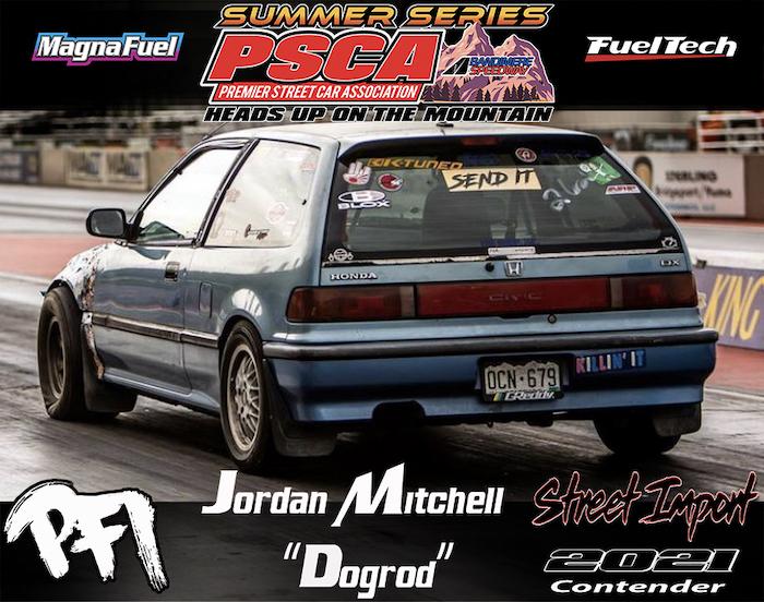 Jordan Mitchell (Dogrod)